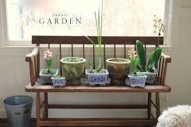 Indoor Garden by Jenny Steffens Hobick Indoor Garden Easy Weekend Project