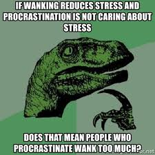 Wanking Memes - if wanking reduces stress and procrastination is not caring about