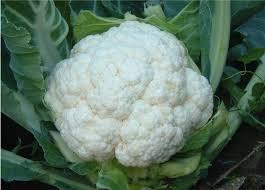 9 best vegetables for babies new kids center