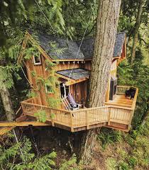 Cool Small Houses Follow Treehousemovement If You Like Cool Tree Houses Photo Via