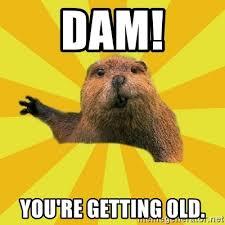 You Re Getting Old Meme - dam you re getting old grumpy beaver meme generator