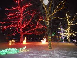Stone Zoo Lights by 100 Christmas Lights At The Zoo Cbus52 Columbus In A Year