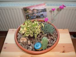 does your garden grow for cancer patients small gardens could
