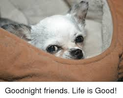 Life Is Good Meme - goodnight friends life is good meme on astrologymemes com