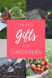 gifts for gardeners a plant lover u0027s gift guide