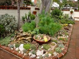 a gem of a succulent garden fine gardening gardening ideas