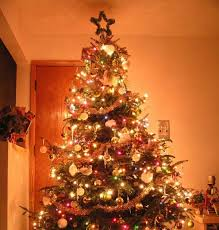The Christmas Tree In The Bible - galatians 4 the truth about christmas hard bible questions and