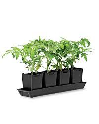 Kitchen Herb Pots Pop Out Pots Set Of 4 Herb Pots Kitchen Herb Garden