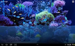 Zombie Aquarium Decorations Fish Tank Live Wallpaper Android Apps On Google Play