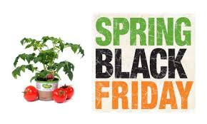 black friday dealls home depot home depot sale plants mulch more southern savers