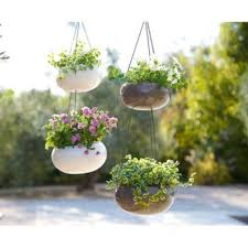 261 best container garden inspiration images on
