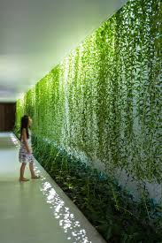 Coastal Home Design Studio Llc Mia Design Studio Envelopes Vietnam House In Plant Covered Walls