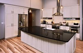 kitchen cabinets remodel transitional archives cabinets by trivonna