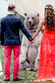 russian couple invite grizzly bear to be a part of their wedding