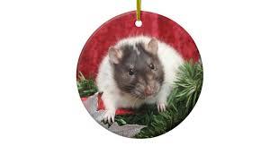 rat ornaments keepsake ornaments zazzle