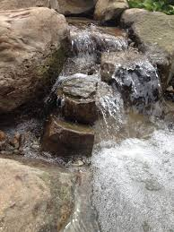 backyard fish pond installation c e pontz sons landscape