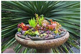 Succulent Gardens Ideas 15 Amazing Succulent Garden Ideas Garden Pics And Tips