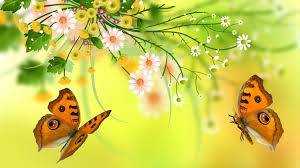 vector flowers butterfly design wallpaper vector and designs