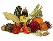 Counsels On Diets And Food Counsels On Diet And Foods