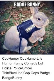 Funny Bunny Memes - 25 best memes about badge bunny badge bunny memes