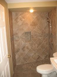 Handicapped Bathroom Showers 13 Wonderful Handicapped Bathroom Showers Designer Direct Divide