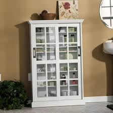 blu ray storage cabinet with doors home design ideas