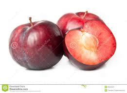 red plum fruit stock image image 26004811