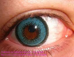 Most Comfortable Contacts For Astigmatism Guide To Color Contact Lenses Eyedolatry