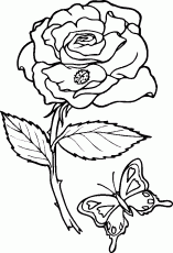 advanced heart coloring pages printable coloring pages