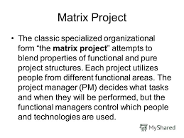 functional managers презентация на тему