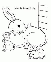 easter bunny coloring pages bunny family free printable
