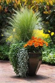 Summer Container Garden Ideas Container Gardening Ideas Container Gardening Wilson