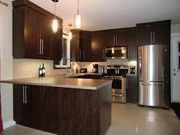 cuisine brun specialitésmm armoire de cuisine en thermoplastique