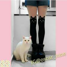 cute stockings cute kitty cat tail tights pantyhose stockings sd00013 syndrome
