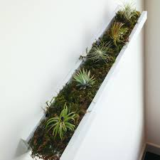 weekend whimsy ikea hack for air plants a spoonful of pretty
