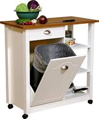 trash can under kitchen sink victoriaentrelassombras com