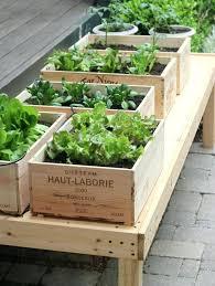 outdoor vegetable garden u2013 exhort me