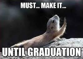 Graduation Meme - graduation memes google search pinned with pinvolve pinvolve co