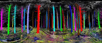smart tree logging with remote sensing gis lounge