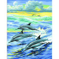 junior paint by numbers dolphin hobbycraft