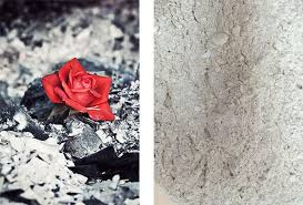 cremation ashes cremation ashes lonité ag switzerland education