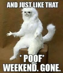 Funny Saturday Memes - saturday memes funny 9 king tumblr