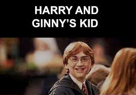 Hary Potter Memes - 8 harry potter memes monkey shoe