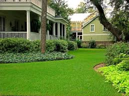 Average Cost Of Landscaping A Backyard 2017 St Augustine Sod Prices St Augustine Pallet Of Sod Cost