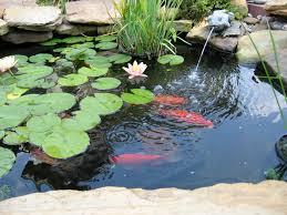Backyard Fish Pond Ideas Outdoor And Patio Enchanting Backyard Koi Pond Ideas Combined