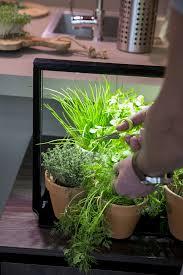 plante pour cuisine led pour plantes pour cuisine mini farm m10 7xled blanc