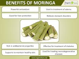 What Vitamin Is Good For Hair Loss 18 Amazing Moringa Benefits Organic Facts