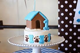 a dog gone cute boy u0027s puppy first birthday party spaceships and