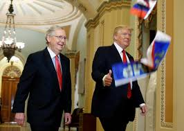 protester throws russian flags at trump inside capitol nbc news