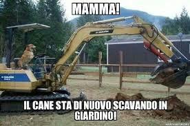 Bulldozer Meme - porco cane meme by oltiru99 memedroid